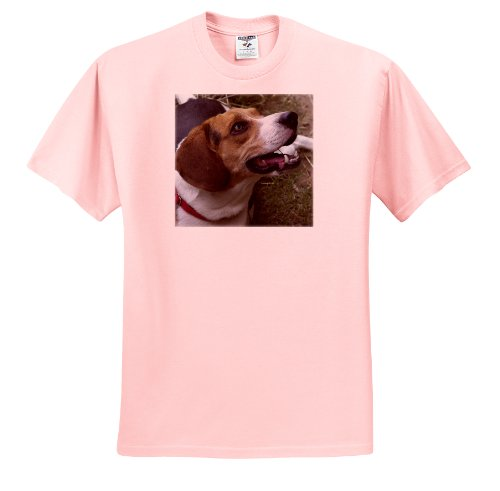 Jackie Popp Nature N Wildlife animals - beagle - T-Shirts - Adult Light-Pink-T-Shirt Large (ts_20095_36)