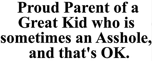 proud-parent-of-a-great-kid-who-is-sometimes-an-ahole-decal-h-45-by-l-12-inches-please-message-us-yo