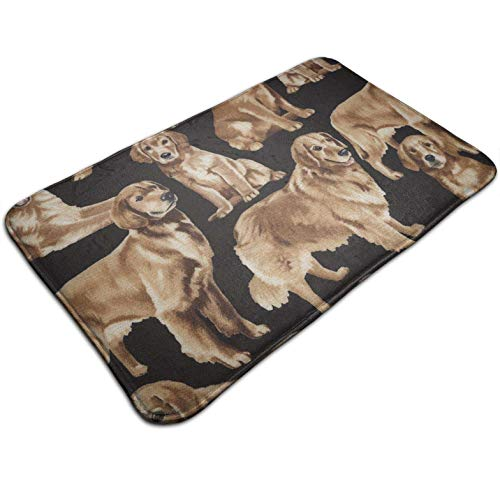(Tuoneng Golden Retrievers Golden,Kitchen Carpet Rug Door Mat Rug for Bathroom Outdoor Porch Laundry Living Multifunction Doormat (19.5