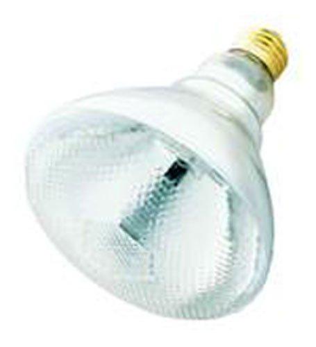 100 Watt Outdoor Light Bulb - 8