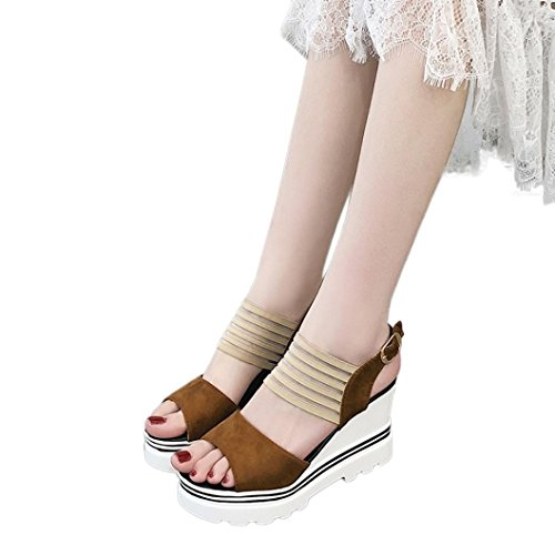6' Platform Slide - HIRIRI Hot Sale Women Fish Mouth Platform High Heels Wedge Sandals Buckle Slope Sandals