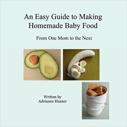 Book An Easy Guide to Making Homemade Baby Food