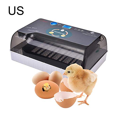(Muhubaih Egg Incubator,Digital Mini Fully Automatic Hatcher Hatching 4-35 Eggs LED Screen Display Temperature Stainless Steel Incubator for Chickens Ducks Goose Birds urkey Poultry)