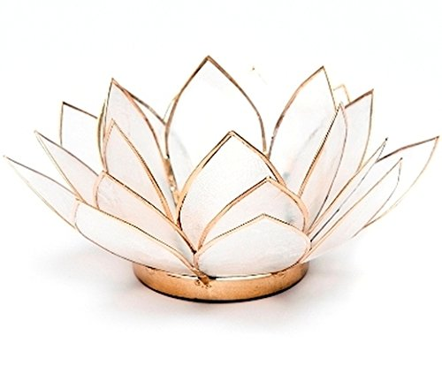 FindSomethingDifferent Lotus Tea Candle Light Holder Capiz Shell - Natural