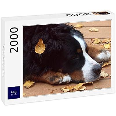 Lais Puzzle Bovaro Del Bernese 2000 Pezzi