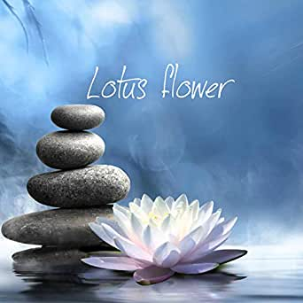 Lotus flower by minh tuan on amazon music amazon you have exceeded the maximum number of mp3 items in your mp3 cart please click here to manage your mp3 cart content title added to mp3 cart lotus flower mightylinksfo