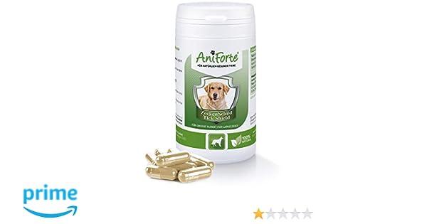 AniForte Pastillas AntiGarrapatas para Perros Grandes más ...