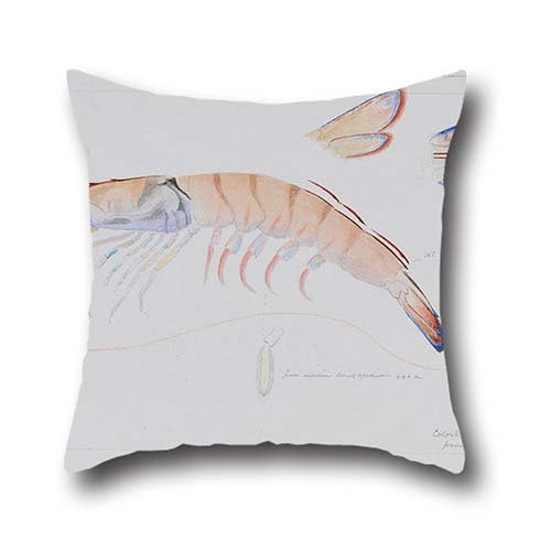 [Oil Painting Arthur Bartholomew - Prawn Cushion Cases 16 X 16 Inches / 40 By 40 Cm Gift Or Decor For Car,office,seat,teens Girls,deck Chair,bedding - Two] (0-3 Months Baby Halloween Costumes Uk)