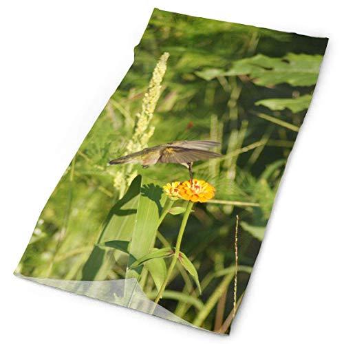 BestgoodsLTD Hummingbird Flower in Forest Headband Bandana£¬Outdoor Multifunctional Headwear,Magic Scarf for Men Women 19.7x9.85inch(50x25cm)