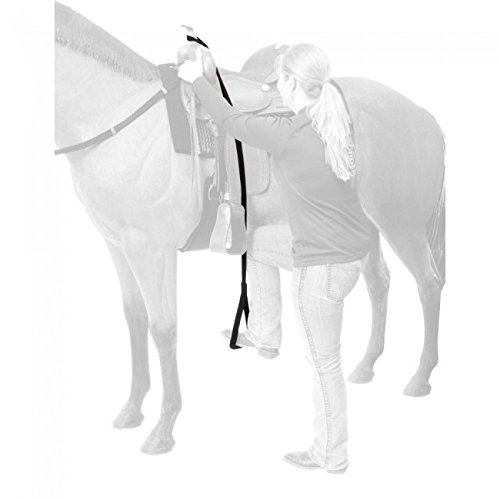 Stirrup Extender - Tough-1 Adjustable Nylon Horse Mounting Aid Helper that Hooks Over the Saddle Horn
