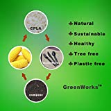 GreenWorks Compostable 100 Forks and 100