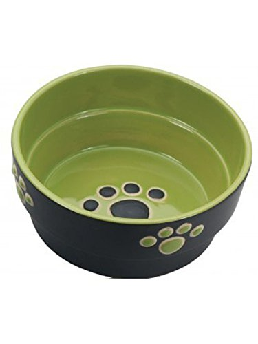 (Ethical Pet Products (Spot) DSO6899 Fresco Stoneware Dog Dish, 5-Inch, Green)