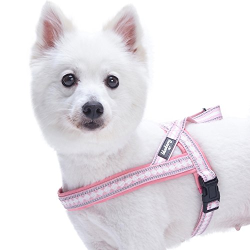 - Blueberry Pet 7 Colors Soft & Comfy 3M Reflective Jacquard Padded Dog Harness, Chest Girth 16.5