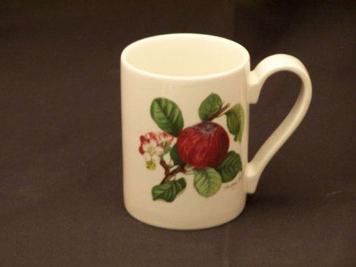 Portmeirion Pomona No Border Coffee Mug(s)-Hoary Morning (Hoary Morning Apple)