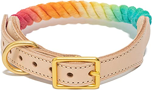 PETPSILAB Dog Collar Leather Adjustable for Large Medium Puppies Size-L Rainbow Rope Braided Cotton Puppy Collars