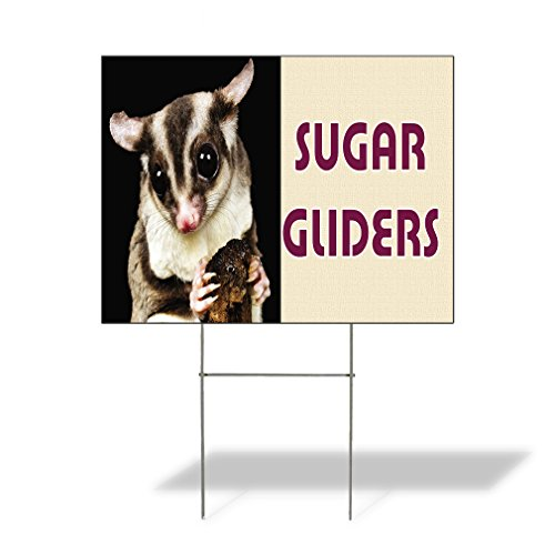 Plastic Weatherproof Yard Sign Sugar Gliders Squirrel Concessions Yellow Sugar Glider for Sale Sign Multiple Quantities Available 18inx12in One Side Print One Sign
