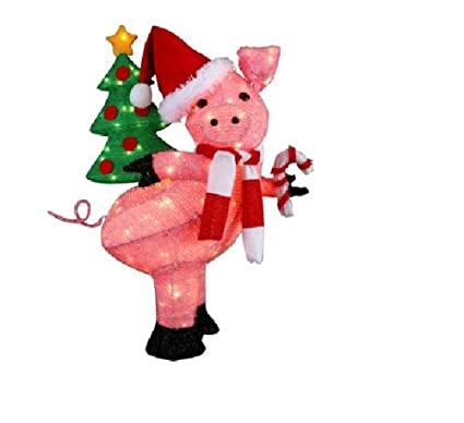 Amazon Com Cute Christmas Lighted Pig Holding A Holiday