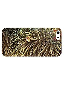 3d Full Wrap Case for iPhone 5/5s Animal High Definition Undersea