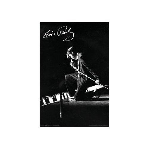 Elvis Presley Poster Live in Concert Rare New - 3
