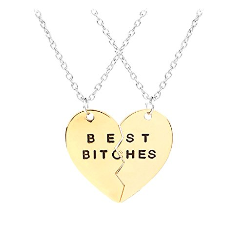 Best Friend BFF Necklace,Split Heart Pendant Necklace Set for 2 3 4 Pieces Gift for Women Girls (2 Pieces Best Bitches/Gold)