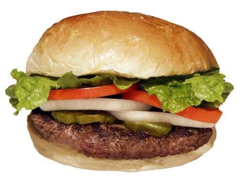 20 Premium Bison Burgers