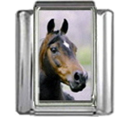 MORGAN STALLION HORSE Photo Italian Charm 9mm Link - 1 x HO021 Single Bracelet Link