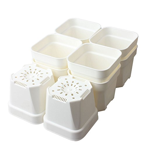 (BangQiao 4.15 Inch Plastic Square Flower Nursery Seedlings Pot Planter Container, Pack of 10,)