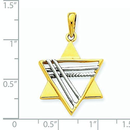 14 carats-Bicolore-Pendentif Etoile de David-Dimensions :  33,3 x 21 mm-JewelryWeb