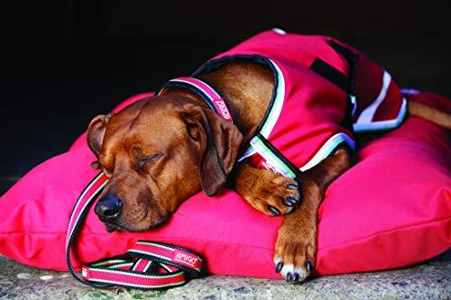 amiGO Dog Blanket 100g