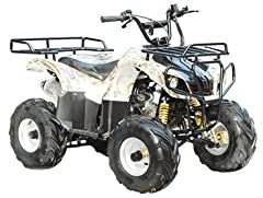 Start Type: Electric start Transmission: Chain Drive Engine Gear: F-N-R Shift Gear: Hand Max Torque: 6.5N.m/5000-5500r/min Wheelbase(inch): 31.89 Ignition: CDI Fuel Capacity(L): 4.2 Chassis: Front Hand Brake: Drum Rear Foot Brake: Hydraulic D...