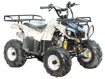 125 Atv (TAO TAO - Brand New 4 Wheeler fully automatic engine with REVERSE - ATA125D)