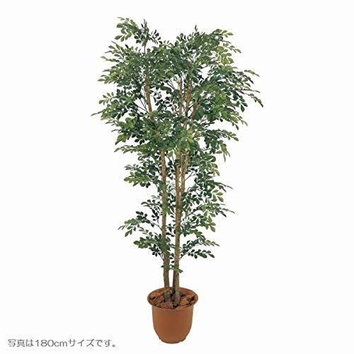 人工観葉植物 トネリコ1.5m 高さ150cm sk1045 (代引き不可) インテリアグリーン 造花 B07T12JKSZ