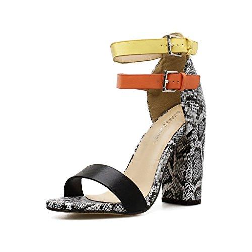 Talons Hauts, Chaussures de Femmes Sexy d'