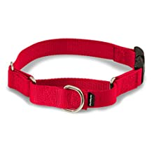 "PetSafe Martingale Collar with Quick Snap Buckle, 1"" Large, Red"