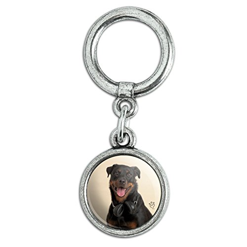 Rottweiler Dog Headphones Sitting DJ Shoe Sneaker Shoelace Charm Decoration - Sitting Dog Charm