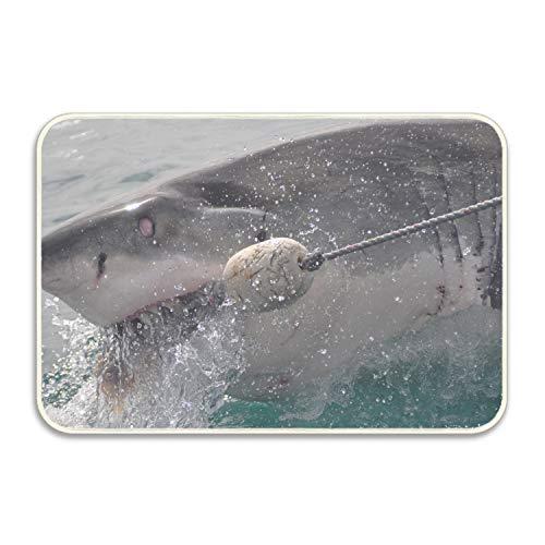 Ranhkdn Shark Camping Door Mat Entrance Floor Mats Rug Indoor/Outdoor/Front Door/Bathroom Mats Rubber Non Slip