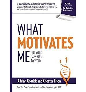 What Motivates Me: Put Your Passions to Work by Adrian Gostick ...