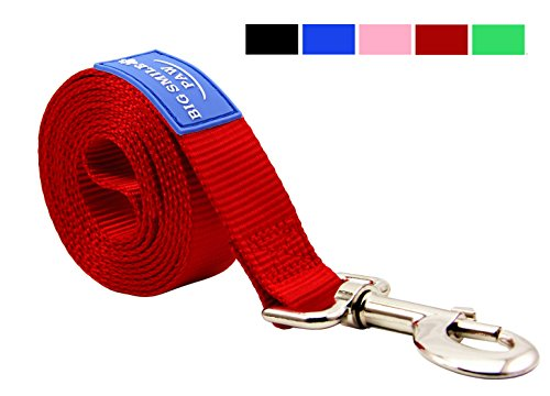 (BIG SMILE PAW Dog Leash Nylon Durable Loop Handle,5 Foot Long 1 Inch Wide (Red))