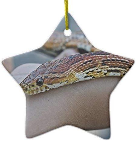 Amazon Com 659parkerrob Christmas Ornaments Corn Snake Star Ceramic Christmas Ornaments For Christmas Tree Decoration Keepsake New Couples Home Kitchen