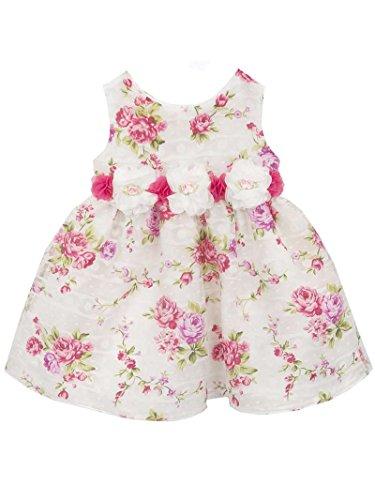 Rare Editions Newborn Girl Vintage Rose Print Spring Easter Dress (3m-12m) (6 months)