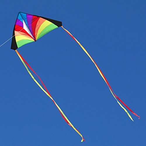 Into The Wind Rainbow Kid's Delta Kite