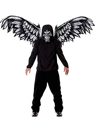 California Costumes Unisex-Adult's Fallen Angel Mask & Wings, Black One -