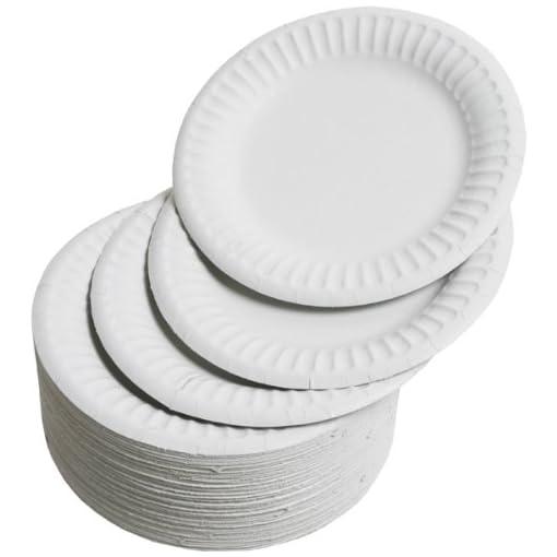 Drinkstuff-Platos-desechables-100-unidades-15-cm