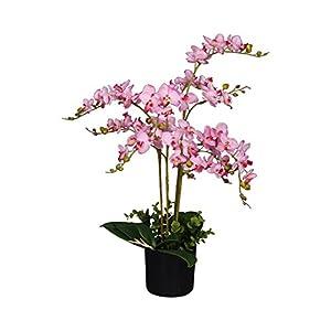 AMERIQUE 691322304817 Unique and Gorgeous Artificial Silk Flower Plant, 2', Pink Orchid 7