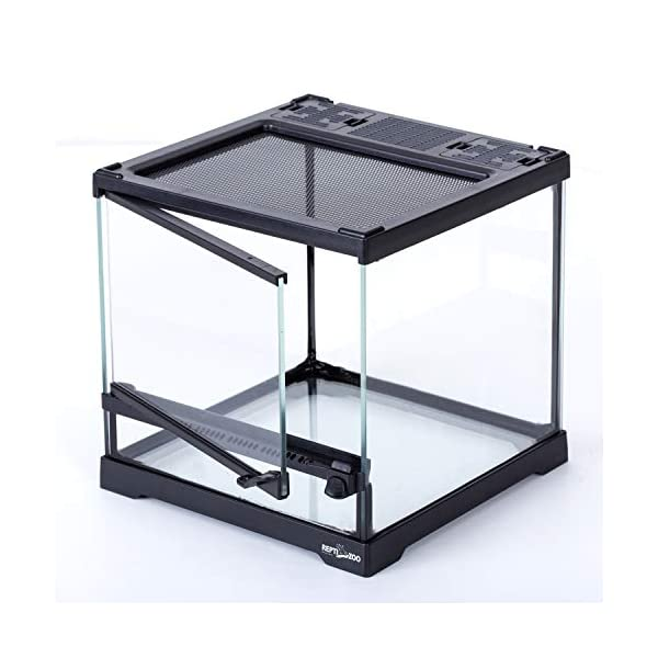 REPTIZOO Mini Reptile Glass Terrarium,Full View Visually Appealing Mini Reptile Glass Habitat