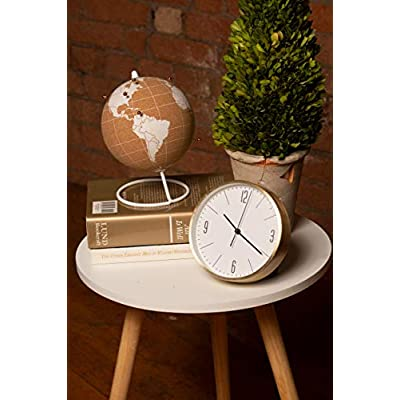 ITA's - Cork Globe Travel Tracker with Gold Push Pins | Stainless Steel Base | Great for Mapping Travels | Personalized World Map Tracker | Vacation Map | Push Pin World Map | (White/Rose Gold Pins): Office Products