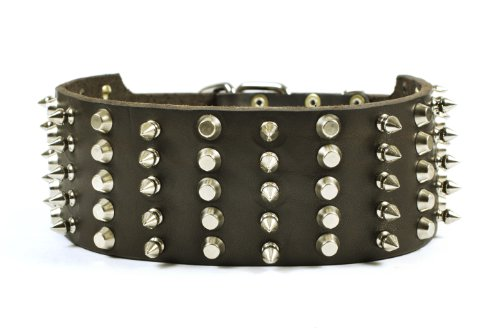 """Dean and Tyler """"WIDE HEAVEN"""", Extra Wide Dog Collar with ..."""