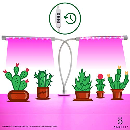Grow Light Dual Head with Timer - for Indoor Plants Flowers Vegetables Seeds, Full Spectrum Red Blue Lights, Hydroponics Greenhouse Gardening, 64 LED, 5 Dimmable Modes, Humidity Proof, 360 Gooseneck by PanBee