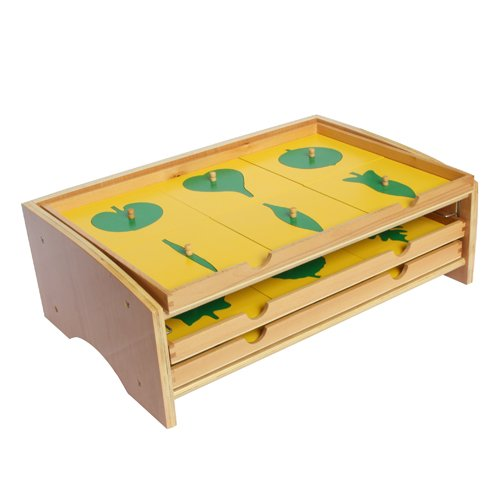 Montessori Botany Leaf Cabinet with Insets