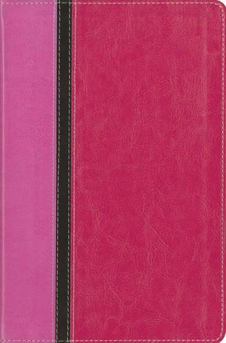 NIV, The Message, Parallel Study Bible, Personal Size, Imitation Leather, Pink: Updated Numbered Edition